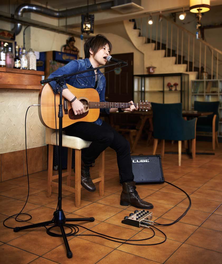 VE-8 Acoustic Singer